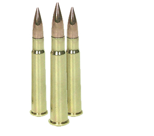 SCA_.303_rounds