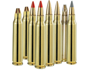 SCA_5.56_rounds
