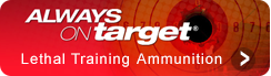 link_always-on-target
